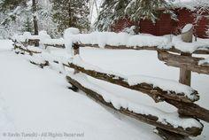 Split Cedar Rail Fence at Cottage
