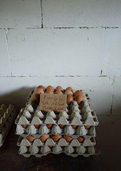 frische Eier vom Hof Poppe