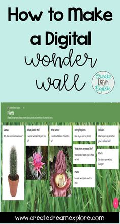 How to Make a Digital Wonder Wall - This tool is great for inquiry based learning and integrating technology in the classroom. Wonder walls are perfect for increasing student engagement. Inquiry Based Learning, Social Studies Activities, Project Based Learning, Creative Teaching, Teaching Resources, Teaching Ideas, Classroom Resources, Building Classroom Community, Mobile Learning