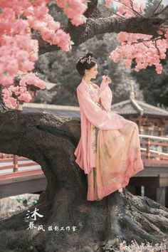 Beautiful Chinese Hanfu costume beautiful Chinese lady