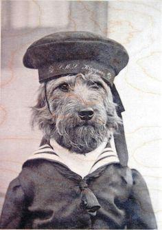 Salty ol' seadog