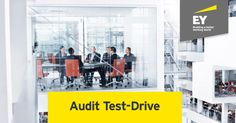 Are you up to the challenge of auditing a company? Find out here:
