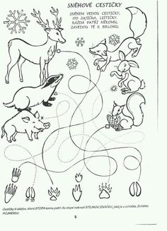 "Animal Tracks Coloring Pages Beautiful Science Coloring Pages for Kindergarten A. - Animal Tracks Coloring Pages Beautiful Science Coloring Pages for Kindergarten Awesome K…â""¢eml - Tree Coloring Page, Bear Coloring Pages, Free Coloring, Coloring Pages For Kids, Coloring Sheets, Coloring Books, Preschool Worksheets, Preschool Activities, Wood Animals"