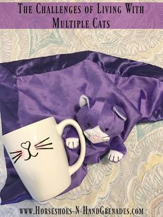The Challenges of Living With Multiple Cats ⋆ Horseshoes & Hand Grenades Calming Cat, Kitten Care, Mama Cat, Purple Cat, Silhouette Vinyl, Horseshoes, Pet Treats, Pet Care, Grenades