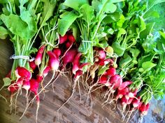 French breakfast radishes at The Simple Farm