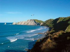 Cape Kidnappers in Hawke's Bay, New Zealand