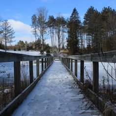 Best Local Walks For the Winter – Barrie 360 Great Places, Places To Go, Beautiful Places, Winter Walk, Cross Country Skiing, Run Around, Local History, Outdoor Fun, Historical Sites