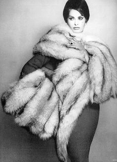 Sophia Loren wearing Revillon's massive blue fox scarf and muff with a ring and earrings by Jean Schlumberger, photo by Avedon, Harper's Bazaar, July 1959