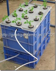 Aeroponics. I was working on a high pressure aeroponic system last few months and now it is a working model with excellent results. Uses almost half of the water used by other hydroponics systems and delivers excellent quality produce