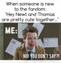#wattpad #fanfiction Cute pics of everybody's favorite OTP from The Maze Runner NEWTMAS -completed! Look for book 2- *I own none of the pictures* *Spoilers* Alsoooo ranked #192 in fanfiction at some point in time :)