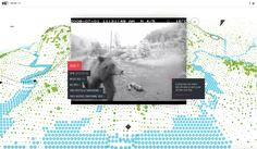 A VR documentary on animal surveillance tracks a grizzly's life.
