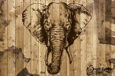Check out Elephant Head by sin9lefighter on Creative Market