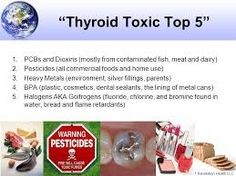 what is dioxin - Google Search