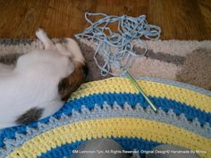 crocheted rug, and tired little assistant :D Tired, Rugs, Crochet, Farmhouse Rugs, Chrochet, Crocheting, Knits, Floor Rugs, Rug