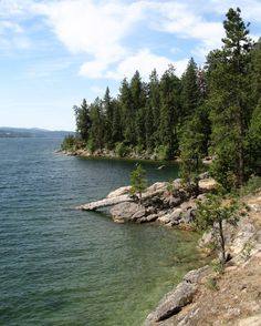 Tubbs Hill Lake Coeur d'Alene - jumping off the rocks into the cold, clear water and then sunning on the rocks after a bracing swim - still a vivid memory after so many years