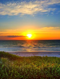 Best Time To Visit Florida ? Indialantic Florida, Melbourne Beach Florida, Melbourne Area, South Beach Florida, Visit Florida, Florida Living, Destin Beach, Florida Travel, Florida Beaches