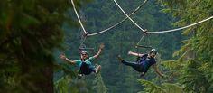 Superfly Ziplines | Whistler