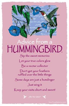 Beauty Advice from a Hummingbird: Let your true colors glow! Your True Nature Animal Spirit Guides, Spirit Animal, Advice Quotes, Me Quotes, Advice Cards, Qoutes, Animal Medicine, Life Quotes Love, Nature Quotes