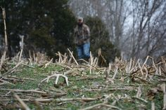 This shed antler hunting season dont take the scatter gun approach by looking everywhere. Focus instead on these high-priority areas alone and take the time you need to look more thoroughly. Whitetail Hunting, Quail Hunting, Deer Hunting Tips, Turkey Hunting, Archery Hunting, Bow Hunting, Hunting Dogs, Hunting Couple, Deer Hunting Decor
