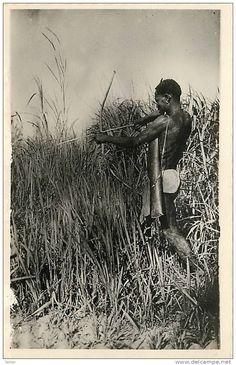 Central African Republic - OUBANGUI CHARI , Bangui , Chasseur Pygmé , *4486