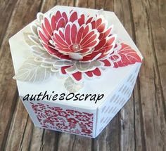 Stampin Up, Succulents Garden, Window Shopping, Gift Packaging, Scrapbooking, Decorative Boxes, Creations, Card Making, Big Shot