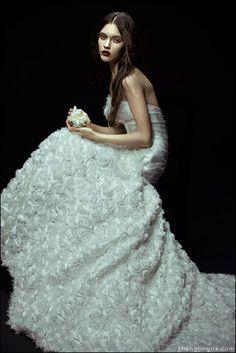 cold flowers zemotion for singapore brides fashion