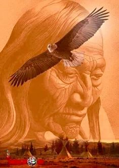 For everyone who loves the Native American way of living Native American Wisdom, Native American Pictures, Native American Artwork, Indian Pictures, Native American Women, American Spirit, American Indian Art, Native American History, American Indians