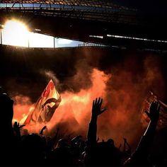 Benfica Ultras- No Name Boys Benfica Wallpaper, Ultras Football, No Name, Football Fans, Lisbon, Concert, Asdf, Grande, Portugal