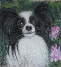 This listing is for a 8 x 10 inch pastel portrait painting of your dog, on Canson Mi Tintes paper. Once the pastel painting is finished it needs to be framed and matted with archival matt board and framed professionally for pastels. $100
