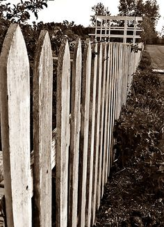 I Still See A Lot Of Old Picket Fences When Driving Around New Brunswick