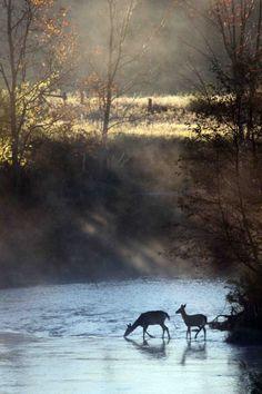mi lascio andare - english-idylls:    The Crossing by Pure Michigan.