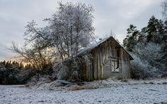 Winter by Hesam1XX. Please Like http://fb.me/go4photos and Follow @go4fotos Thank You. :-)