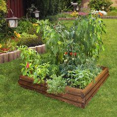 5 Pretty Raised Vegetable Garden Plan