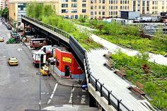Parque High Line : Exemplo de urbanismo sustentável em Nova Iorque
