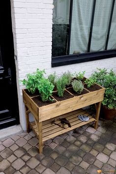 4 Easy Steps to Set-Up Your Own Backyard Aquaponics System - Tools And Tricks Club Herb Garden Pallet, Pallets Garden, Pallet Gardening, Herbs Garden, Potager Palettes, Aquaponics System, Garden Boxes, Garden Table, Raised Garden Beds