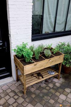 Jardinière haute décoratrice. Plus