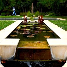 Toronto Gardens: A pool garden with imperfect symmetry