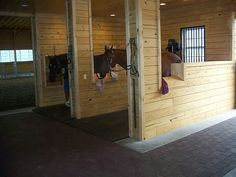 Saddle cutouts on grooming stalls
