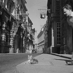 Lombard Street, City Of London, Greater London - John Gay, 1960's.