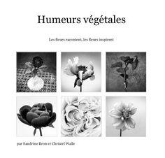 Cliquer pour un aperçu de Humeurs végétales livre photo
