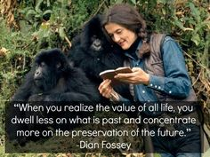 Dian Fossey's last diary entry before her senseless murder. She's a truly inspiring individual.