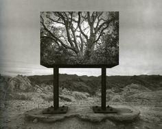 [사진작가] 제리 율스만(Jerry N.Uelsmann, 1934~ )의 사진 - 초현실주의 : 네이버 블로그