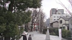 #street#temple#japan#jpon#travel
