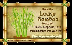 """⭐ For more GOOD LUCK & WISHES  CLICK HERE ➡   ⭐  http://www.tranquilwaters.uk.com/luckandwishes  ⭐   for lots of images of good luck """"charms"""", blessings and wishes, created to bring YOU and your friends GOOD LUCK   ⭐ AND you can send off your wishes your Angels, here ➡   http://www.myangelcardreadings.com/makeawish OR  Make a fairy wish here ➡  http://www.myangelcardreadings.com/fairymagic  OR at the lucky wishing well, here ➡  http://www.myangelcardreadings.com/fairieslivehere"""