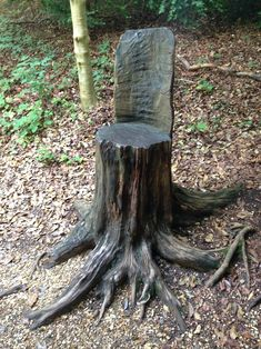 Cut a tree trunk into discs and lay out as a stepping path. Description from…