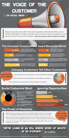 The Voice of the Customer on Social Media [INFOGRAPHIC]