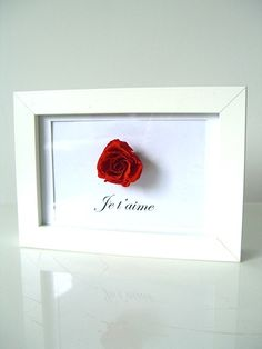 Je t'aime... Rose Stabilisée, Moss Art, Home Flowers, Decoration, Art Floral, Wall Art, Frame, Pictures, Home Decor