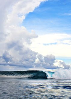 Alex Gray in the Mentawais ph Brent Bielmann