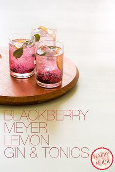 Ingredients: 12 blackberries 20 fresh mint leaves 2 Meyer lemons (can sub. regular lemons) 1/4 cup simple syrup 12 ounces good quality gin tonic water ice