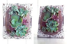 Frame up your floral succulents with this DIY.